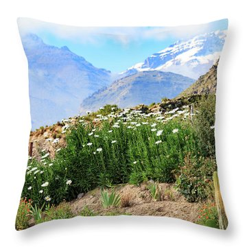 Throw Pillow featuring the photograph Snow In The Desert by David Chandler