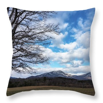 Snow In The High Mountains Throw Pillow