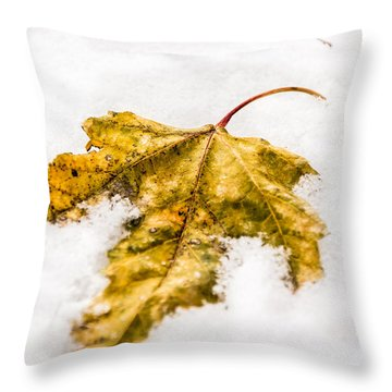 Snow Leaf Throw Pillow