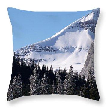 Snow Ledge Throw Pillow by Greg Hammond