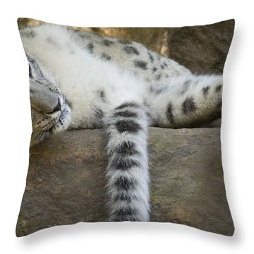Snow Leopard Nap Throw Pillow by Mike  Dawson