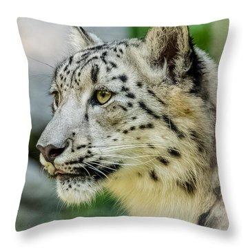 Snow Leopard Portrait Throw Pillow