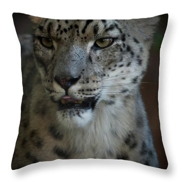 Throw Pillow featuring the photograph Snow Leopard by Roger Mullenhour