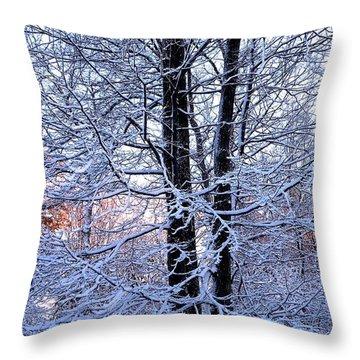 Snow Maple Morning Landscape Throw Pillow
