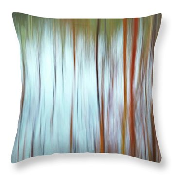 Snow Melt In The Wetlands Throw Pillow