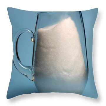 Snow Melting 2 Of 7 Throw Pillow