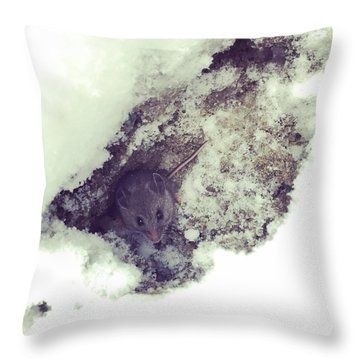 Snow Mouse Throw Pillow