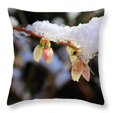Snow On Blueberry Blossoms Throw Pillow by Kristin Elmquist