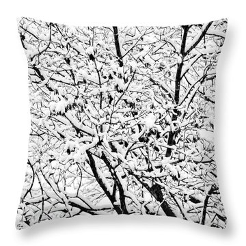 Throw Pillow featuring the photograph Snow On Branches by Lars Lentz