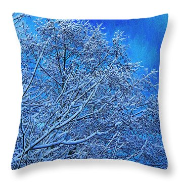 Throw Pillow featuring the photograph Snow On Branches Photo Art by Sharon Talson