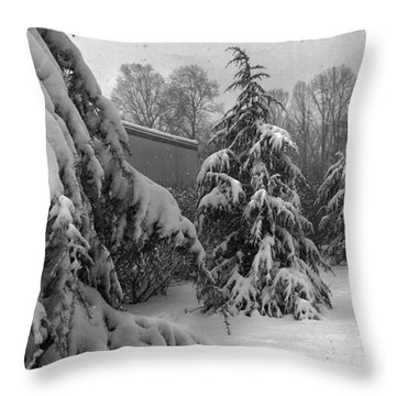 Throw Pillow featuring the photograph Snow On Pines by Robert G Kernodle
