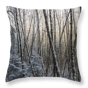 Snow On The Alders Throw Pillow