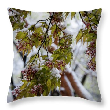 Throw Pillow featuring the photograph snow on the Cherry blossoms by Chris Flees