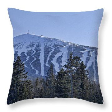 Snow On The Loaf Throw Pillow by Alana Ranney