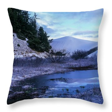 Snow On The Sand Throw Pillow