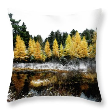 Throw Pillow featuring the photograph Snow Paints Larch Grove by Wayne King