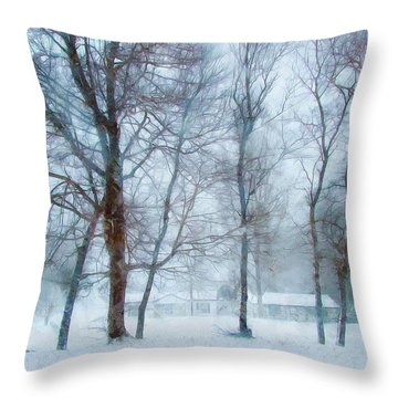 Snow Place Like Home Throw Pillow