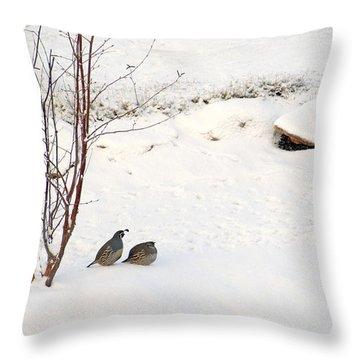 Snow Quail Throw Pillow