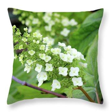 Snow Queen Hydrangea Throw Pillow