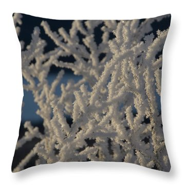 Throw Pillow featuring the photograph Snow Scean 4 by Phyllis Spoor