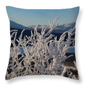 Throw Pillow featuring the photograph Snow Scene 5 by Phyllis Spoor
