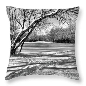 Snow Scripting Throw Pillow