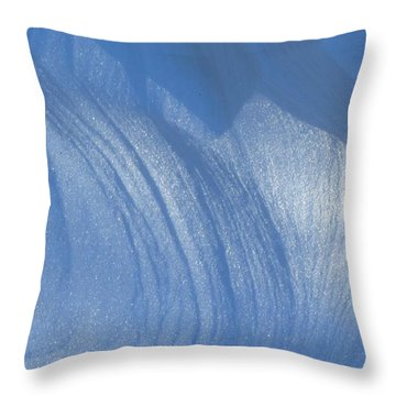 Snow Sculpted By The Wind Throw Pillow