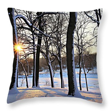 Snow Starred Grove Throw Pillow by Kathy M Krause