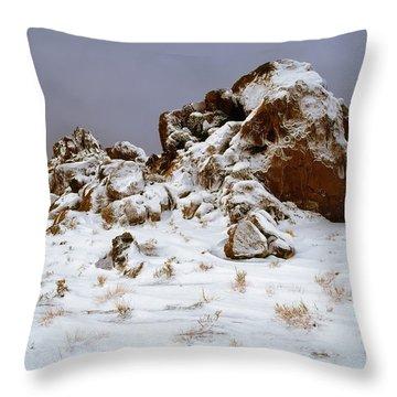 Snow Stones Throw Pillow