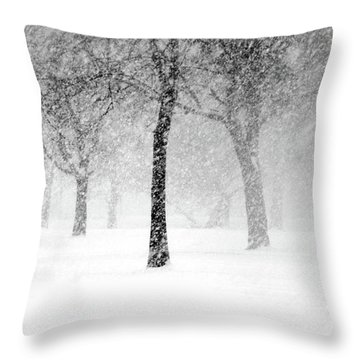 Snow Storm At Starved Rock Throw Pillow