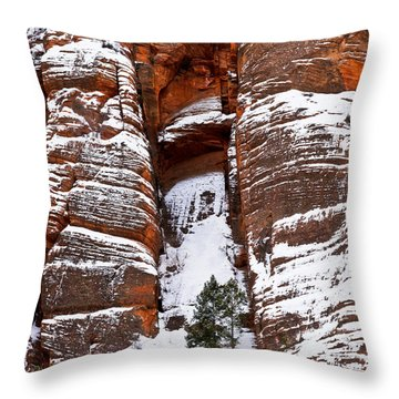 Snow Stripes Throw Pillow by Christopher Holmes