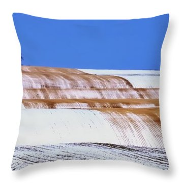 Snow Stubble Tree Line 13955 Throw Pillow by Jerry Sodorff