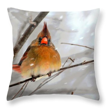Throw Pillow featuring the photograph Snow Surprise by Lois Bryan