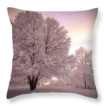 Snow Tree At Dusk Throw Pillow