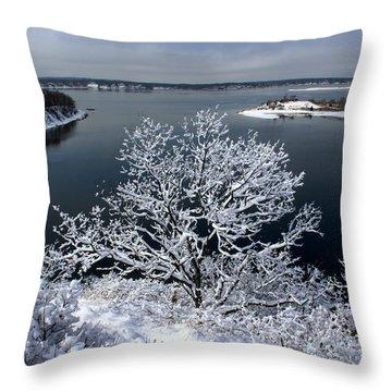 Snow Tree Cove Port Jefferson New York Throw Pillow