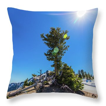 Throw Pillow featuring the photograph Snow Tree by Jonny D