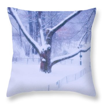 Snow Walk Central Park Throw Pillow by Dave Beckerman