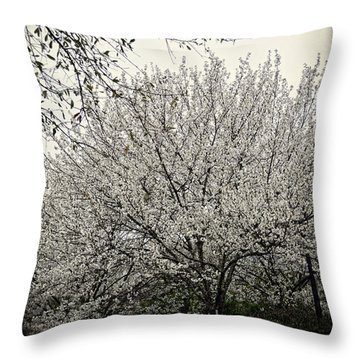 Snow White Flowering Tree Throw Pillow