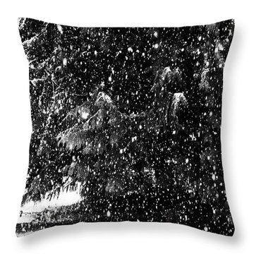 Throw Pillow featuring the photograph Snow by Yulia Kazansky