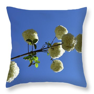 Throw Pillow featuring the photograph Snowballs On A Stick by Skip Willits