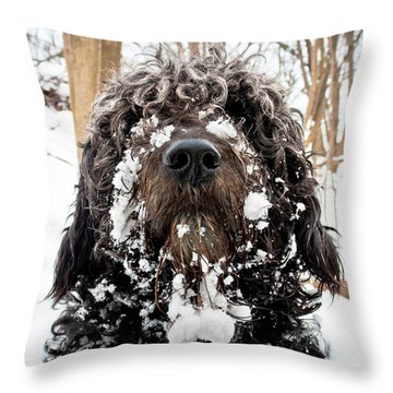 Snowbeast No 1 Throw Pillow