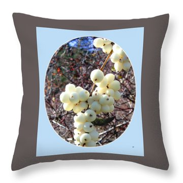 Throw Pillow featuring the photograph Snowberry Cluster by Will Borden