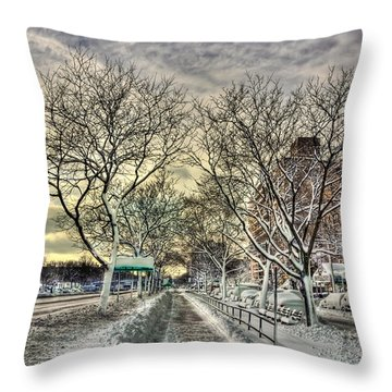 Snowbound Throw Pillow by Evelina Kremsdorf
