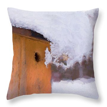 Throw Pillow featuring the photograph Snowdrift On The Bluebird House by Gary Slawsky