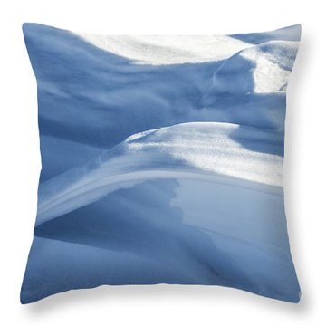 Throw Pillow featuring the photograph Snowdrift Structure by Angela DeFrias