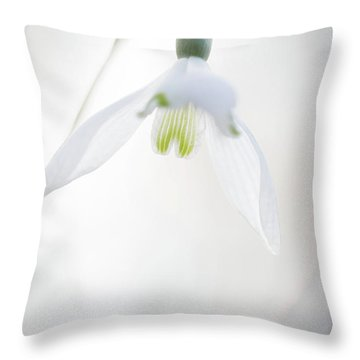 Throw Pillow featuring the photograph Snowdrop A Fragile Hint Of Spring by Dirk Ercken