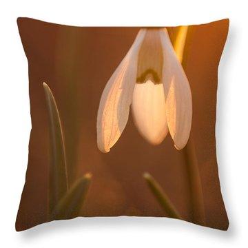Throw Pillow featuring the photograph Snowdrop by Davorin Mance