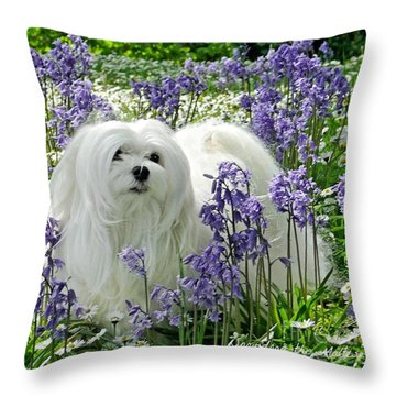 Snowdrop In The Bluebell Woods Throw Pillow by Morag Bates