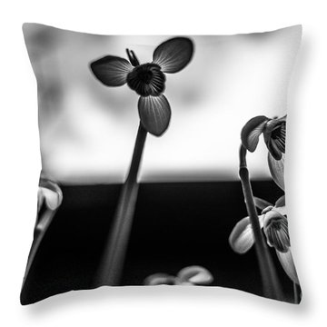Snowdrops Standing Tall Throw Pillow