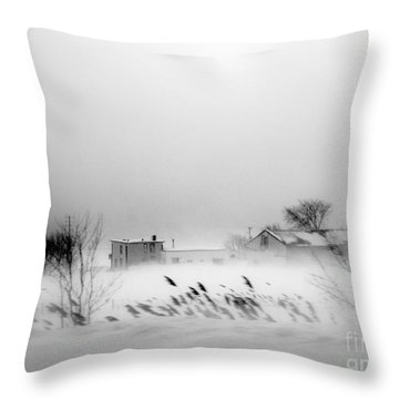 Snowed - In Throw Pillow